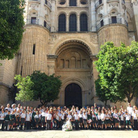 Peregrinación a la S.I. Catedral